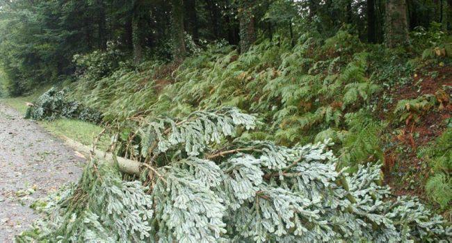 Également débattue en conseil communautaire, la voirie car suite au violent orage du 31 août, les communes de Lilhac, Montbernard et Salherm ont besoin de travaux sur leur voirie communale. Photo YCS