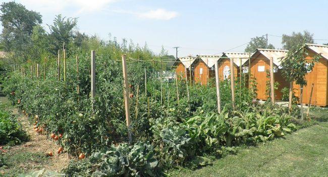 La fête des jardins se déroulera dans l'enceinte des jardins familiaux./