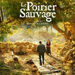 Le poirier sauvage au cinéma de L'Isle-en-Dodon